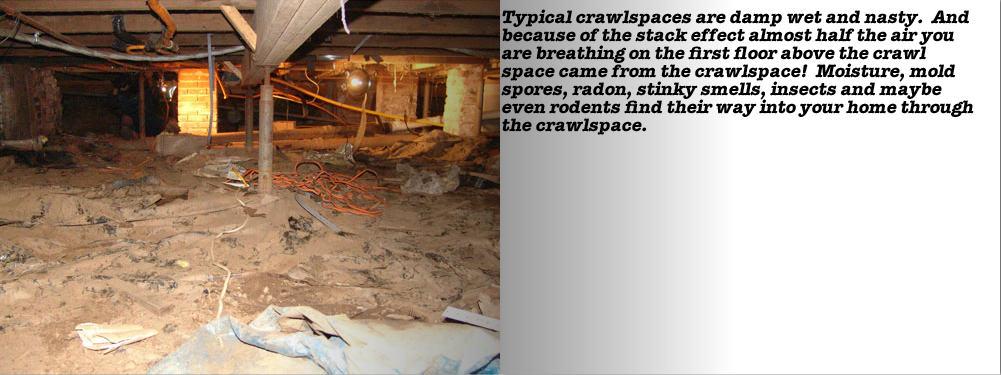 atlanta crawl space waterproofing dry tec closed crawl space